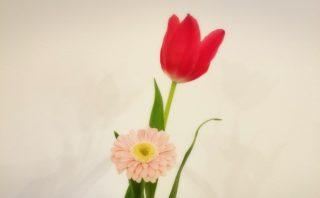 春よ来い☆
