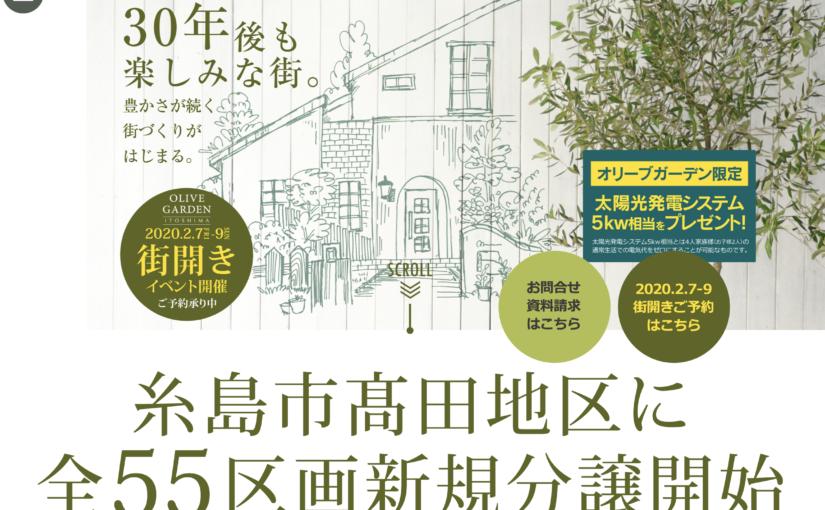 糸島 オリーブ ガーデン